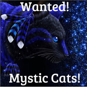 Secret Posher - Mystic Cat - game Q & A